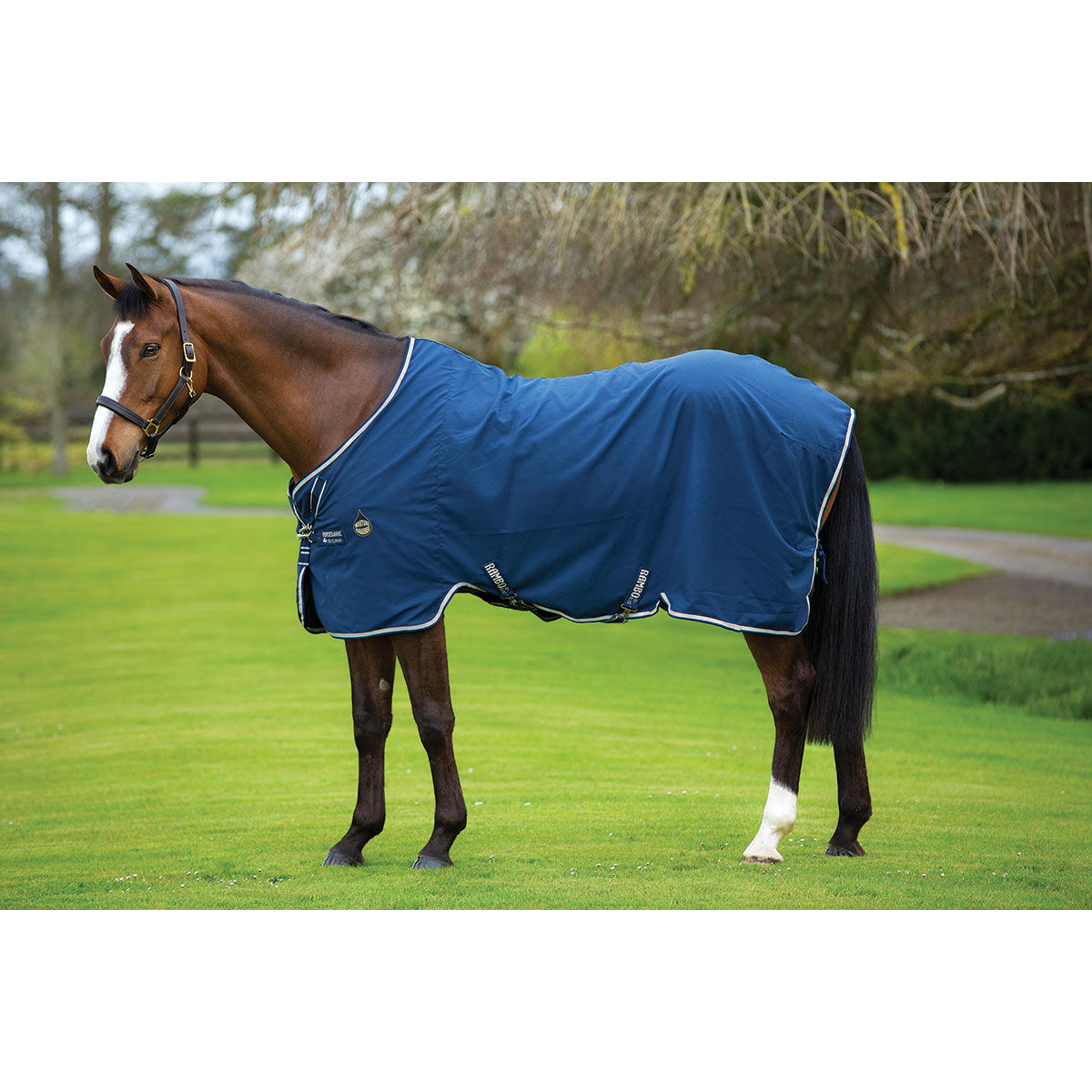 Stable Rugs Horze Uk