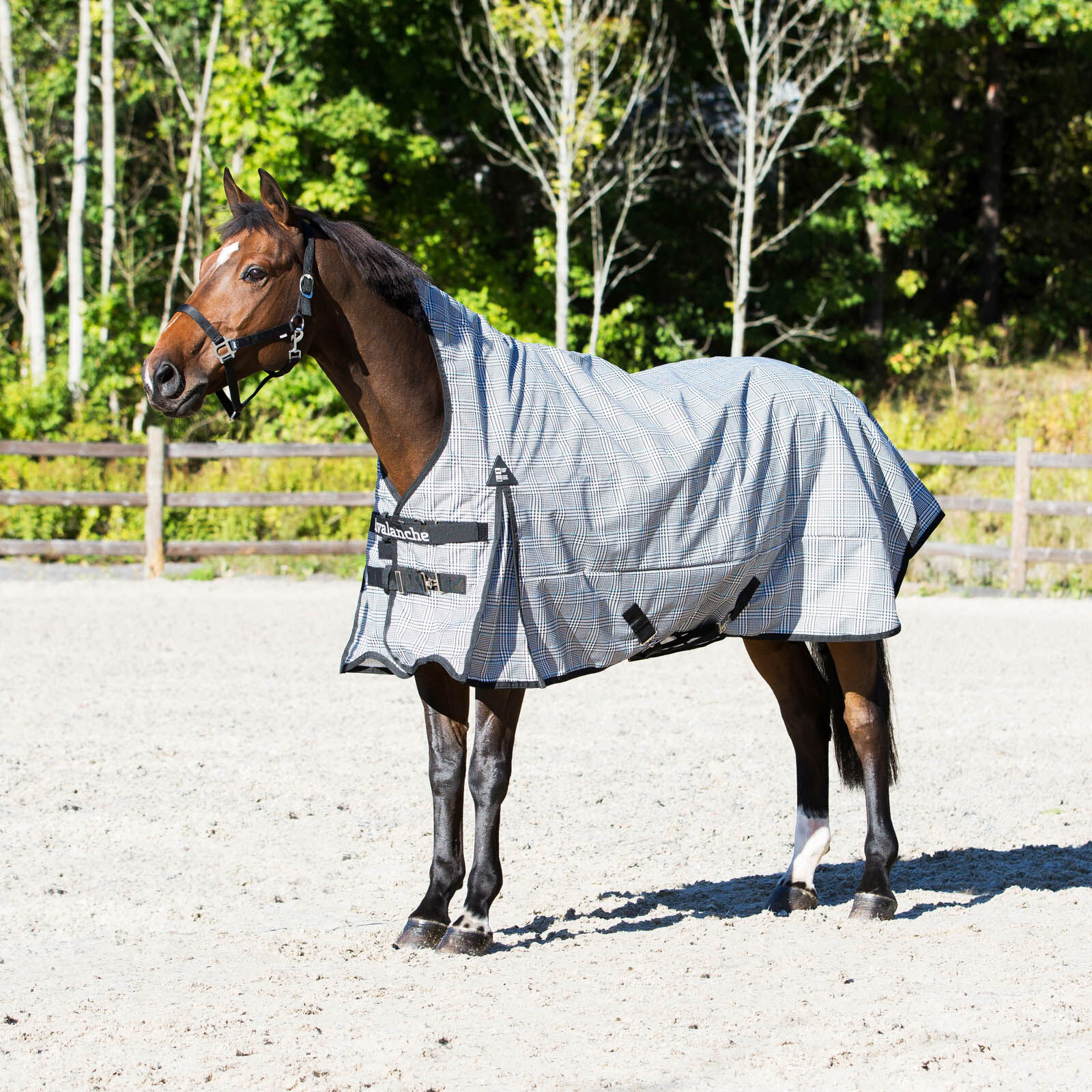 Horze Avalanche Rain Fleece