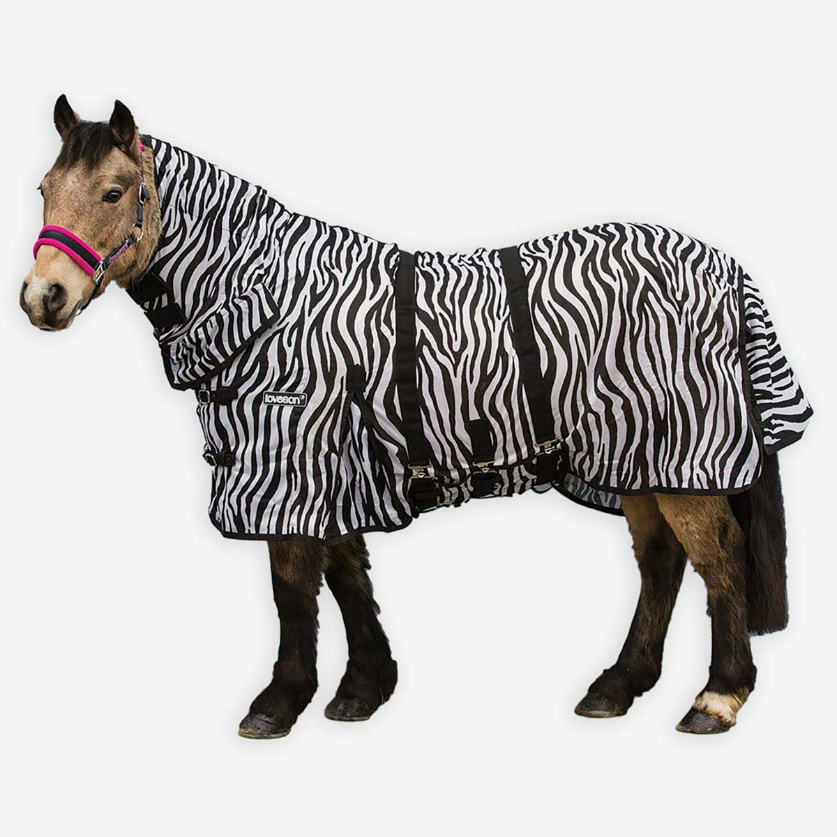 Zebra Fly Rug Uk: Loveson Zebra Fly Rug