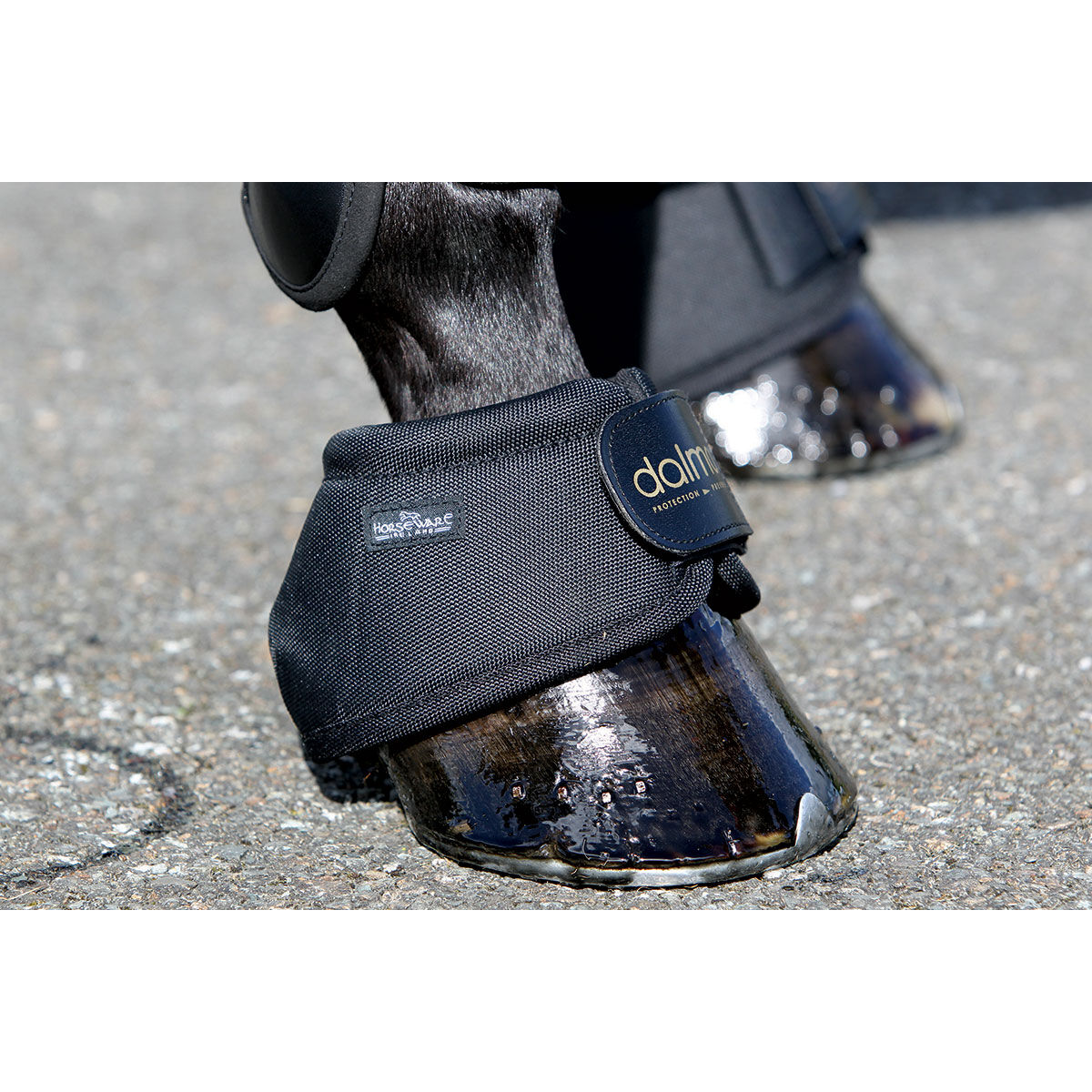 Horse Cob Horseware Rambo Fly Boots Vamoose Gamaschen Silver//Purple Pony
