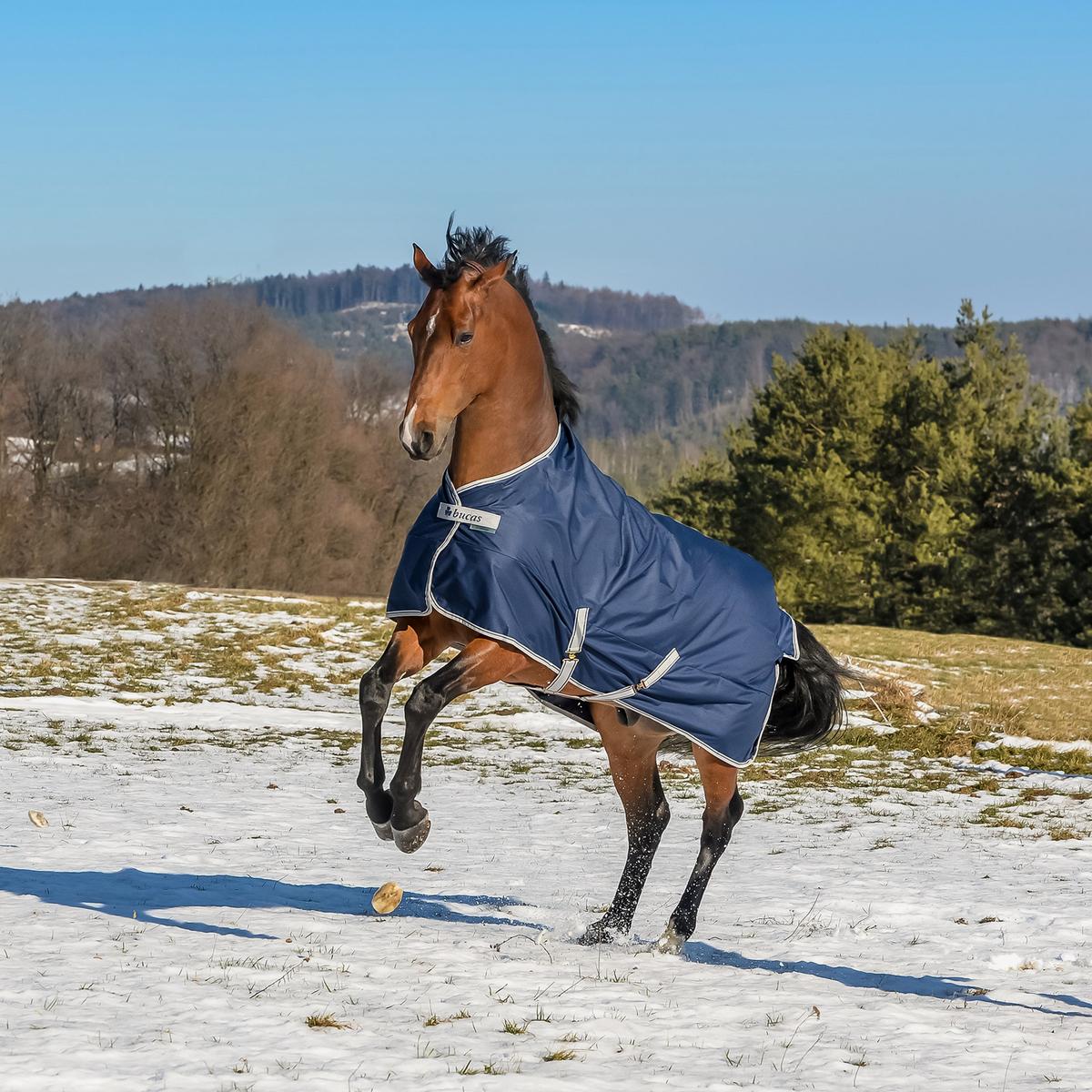Bucas Freedom Turnout Light Pony Rug Horze